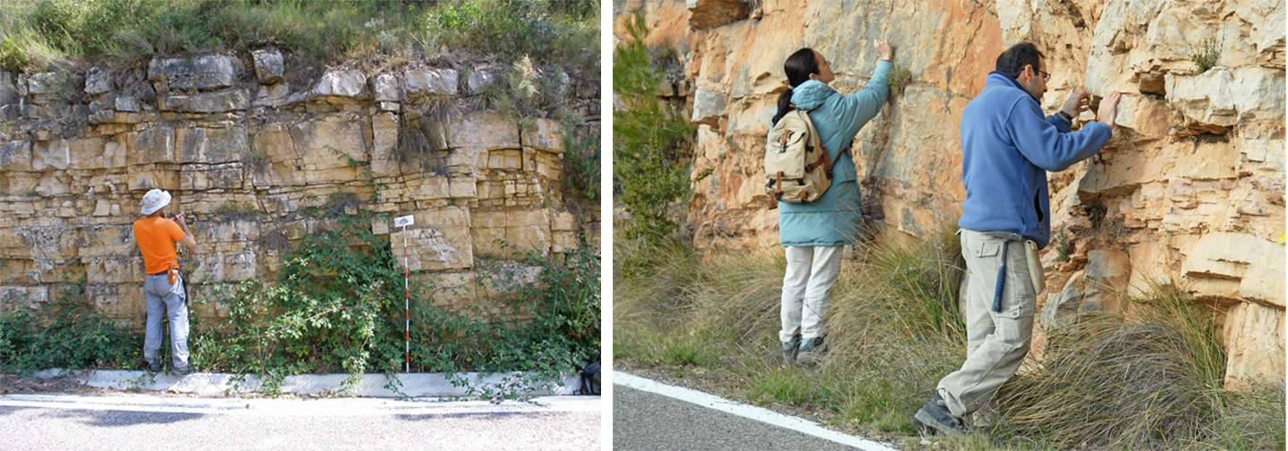 Carbonate Microbial Sedimentology Triassic Catalan Basin Ramp